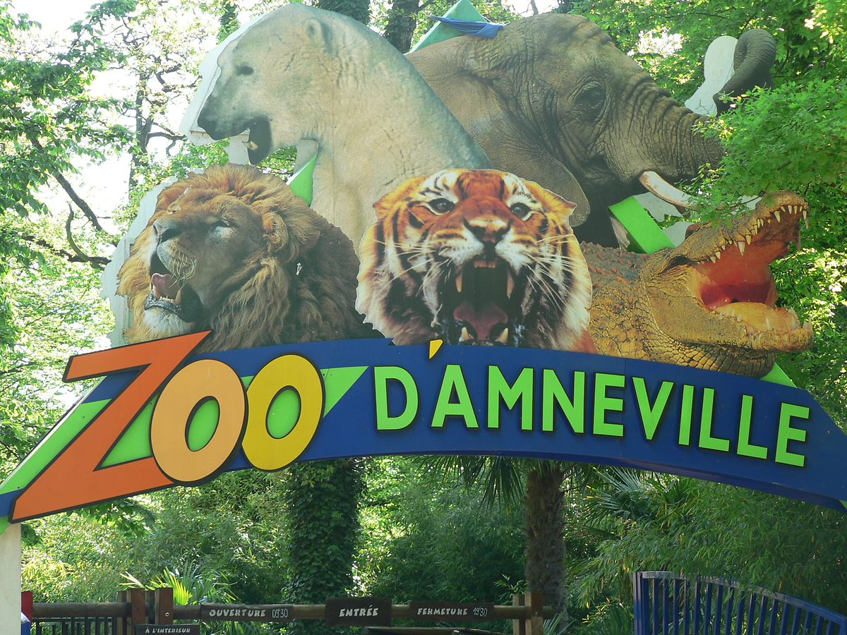 Expensive but with animals from around the world and plenty of shows daily