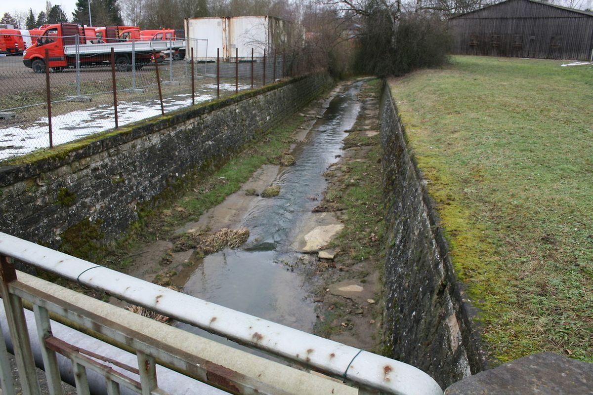 Le projet « Porte de Hollerich » prévoit de renaturer le ruisseau de Cessange