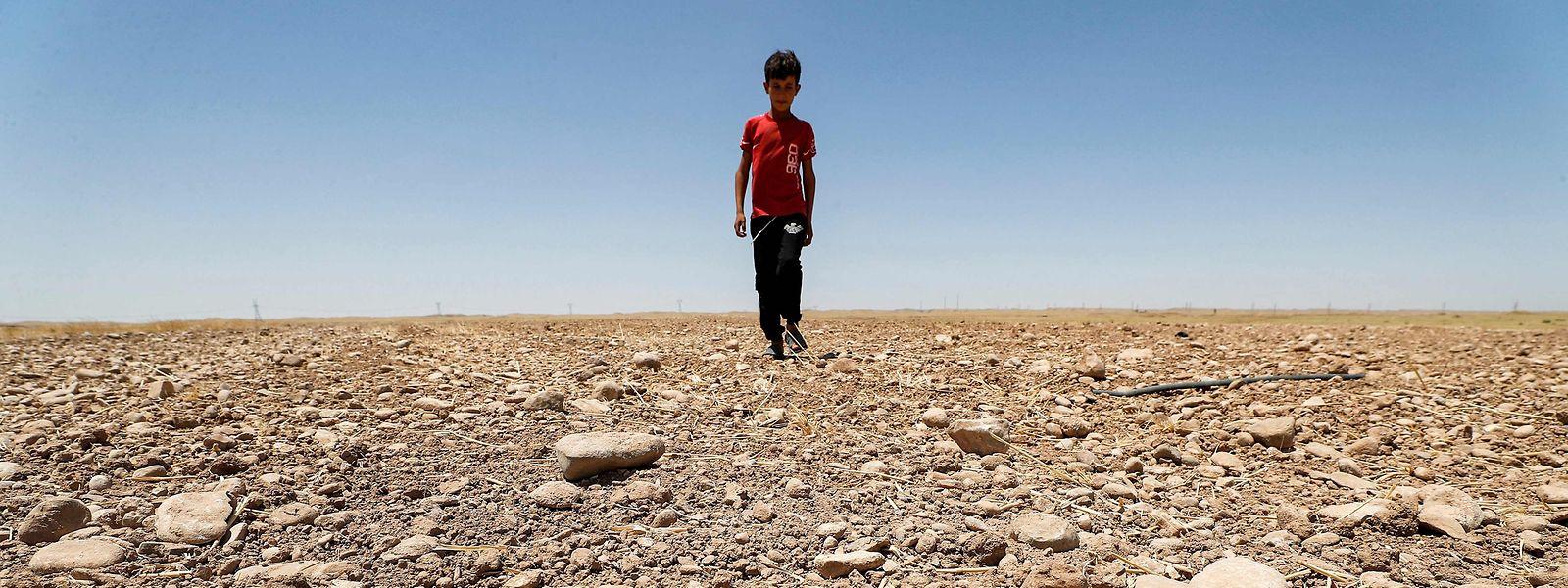 Dort, wo das Trinkwasser knapp werde und die Produktivität der Ernten abnehme, seien Menschen gezwungen, ihre Heimat zu verlassen, so der Bericht.