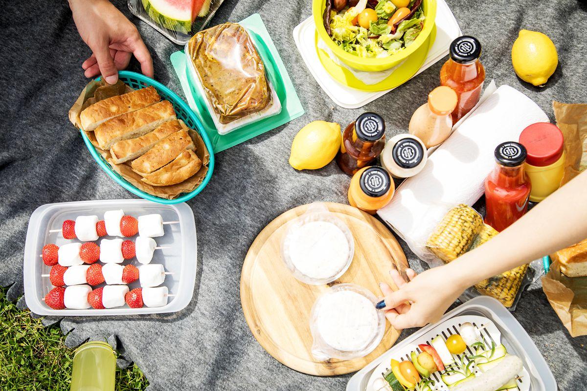 Ein leckeres Picknick ist im Sommer ein Muss. Am schönsten ist es ohne nervige Wespen. Jedoch stürzen sich nur zwei Arten mit Vorliebe auf das Essen der Menschen.
