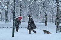 People walk their dogs in a park covered with snow on December 28, 2020 in the center of Milan. (Photo by Miguel MEDINA / AFP)