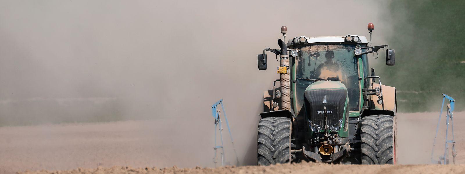 Unter dem Regenmangel der vergangenen Monate litt insbesondere die Landwirtschaft.
