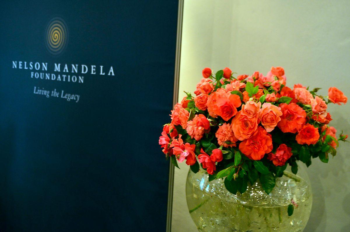 """Die orangefarbene """"Mandela-Rose""""."""