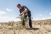 HANDOUT - 31.03.2017, ---: 31.03.2017: Tony Rinaudo, Berater für natürliche Ressourcen,  Ernährungssicherheit und Klimawandel für World Vision Australia, ist Träger des Alternativen Nobelpreises 2018. Der Agrarwissenschaftler gilt ebenfalls als «Waldmacher». Als Entwicklungshelfer im Niger fand er eine Methode, in Trockengebieten Bäume aus unterirdischen, oft noch intakten Wurzelsystemen zu ziehen. So wurden rund 50 000 Quadratkilometer mit 200 Millionen Bäumen wieder fruchtbar gemacht. Rinaudo inspirierte eine ganze Bewegung von Landwirten, die Sahelzone neu zu begrünen. Foto: Silas Koch/right livelihood award/dpa - ACHTUNG: Nur zur redaktionellen Verwendung im Zusammenhang mit der aktuellen Berichterstattung und nur mit vollständiger Nennung des vorstehenden Credits +++ dpa-Bildfunk +++