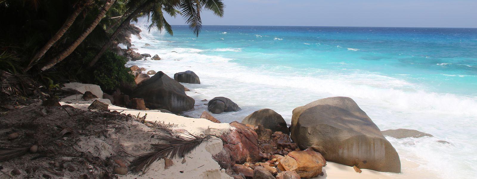 Bilderbuchparadies: Auf der kleinen Insel Frégate erobert sich die Natur langsam ihren Platz zurück. Für die Postkartenidylle sorgen bereits jetzt der weiße Sandstrand, das türkisblaue Wasser und die Palmen.