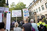 Les expatriés britanniques semblent majoritairement anti-Brexit et attendent le scrutin de jeudi avec appréhension.