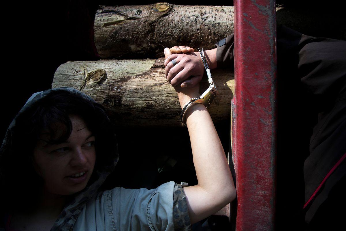 En 2017, des activistes s'enchaînaient au bois abattu en signe de protestation.