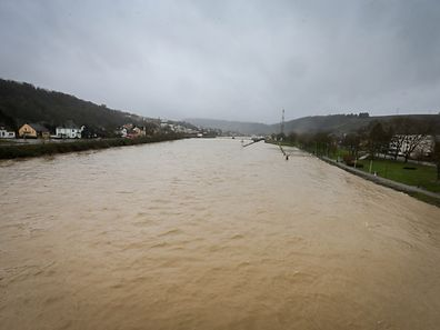 Mosel - cote de vigilance - Hochwasser - Grevenmacher - Photo : Pierre Matgé