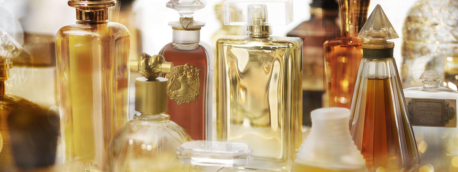 In der Osmothek werden rund 4000 Parfums aufbewahrt, darunter mehr als 400, die man sonst nirgendwo mehr findet.