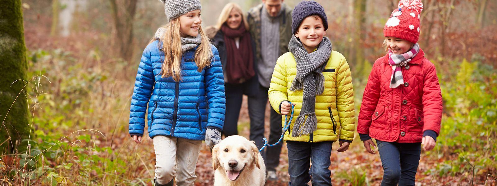 Spaziergänge in der freien Natur fördern das Miteinander.