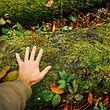 Keine Berührungsängste: In den Beforter Lehrgängen geht man auf Tuchfühlung mit der Natur.