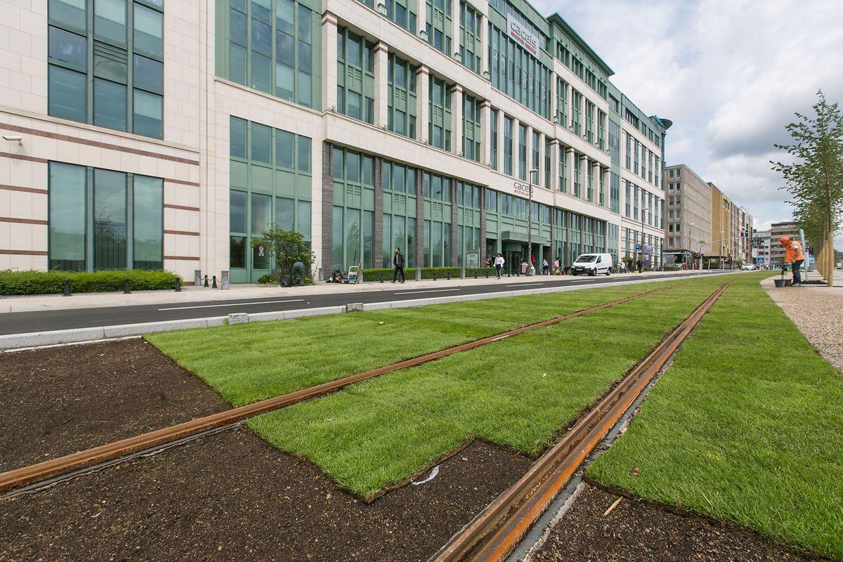 Am 27. Juli wird die Tram den regulären Betrieb auf dem Streckenabschnitt zwischen der Roten Brücke und der Stäreplaz aufnehmen.