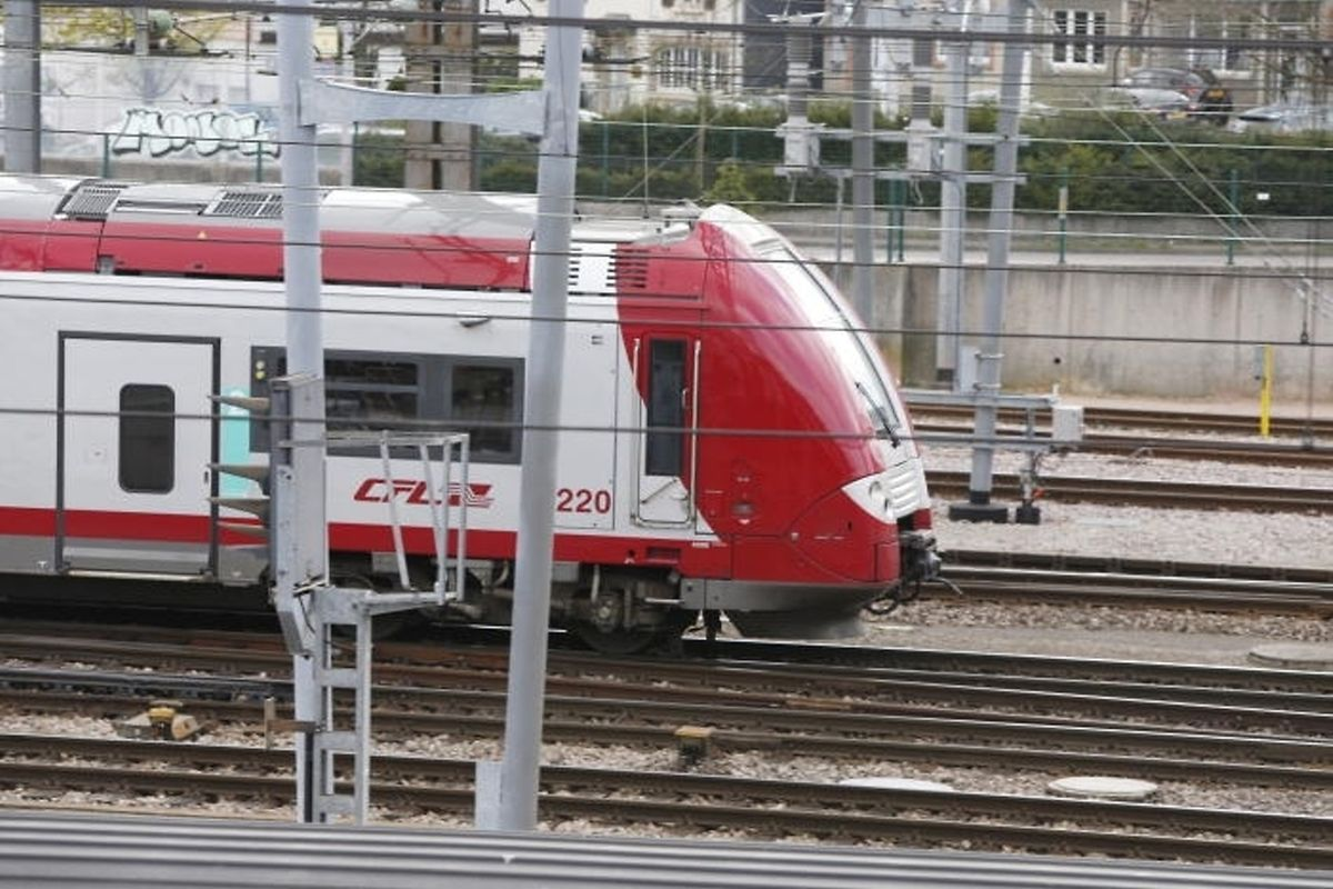 Fifty-five percent of the train delays are mainly due to overloaded transportation infrastructure Photo: LW