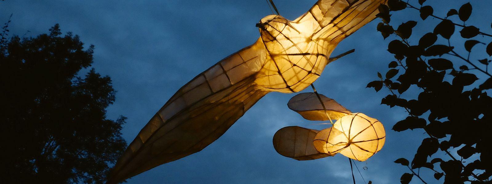 Zahlreiche Lampions sorgten für eine Wunderwelt aus Licht.
