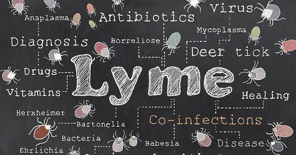 La maladie de Lyme au Luxembourg: enquête - Luxemburger Wort - Edition Francophone