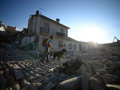 TOPSHOT - Rescue and emergency services personnel searches for victims with a dog in the central Italian village of Amatrice, on August 24, 2016 after a powerful earthquake rocked central Italy. A powerful earthquake rattled a remote area of central Italy on August 24, 2016, leaving at least 120 people dead and scenes of carnage in mountain villages. With 368 people injured and an unknown number trapped under rubble, the figure of dead and wounded was expected to rise in the wake of the pre-dawn quake, Prime Minister Matteo Renzi warned.  / AFP PHOTO / FILIPPO MONTEFORTE