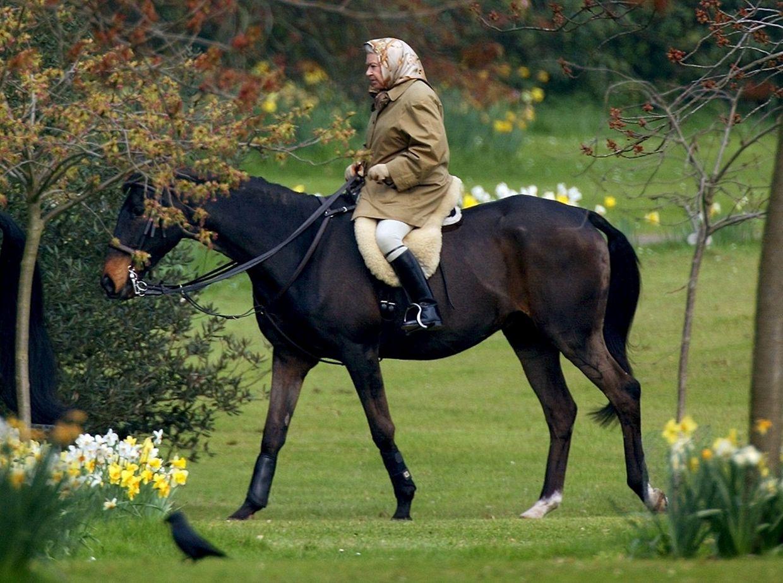 Hoch zu Ross: Die Queen gilt als Tierliebhaberin. (Aufnahme aus dem Jahr 2002)