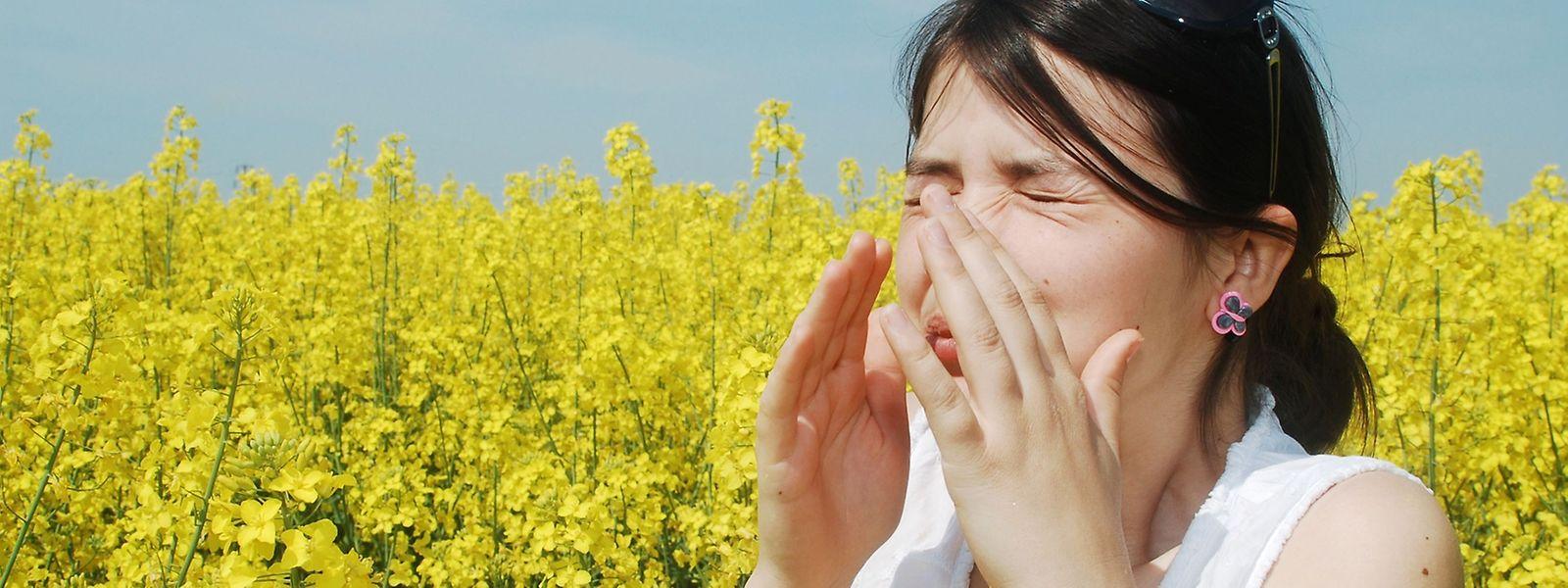 Der lästige Heuschnupfen ist für viele Allergiker eine richtige Plage.