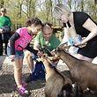 Saisonauftakt im Bettemburger Maerchenpark (Parc Merveilleux) - im Streichelzoo - Foto: Serge Waldbillig