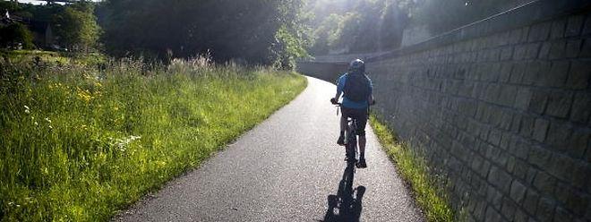 Kein Einzelfall: In den letzten Tagen wurden bereits ein Dutzend Fahrräder gestohlen.