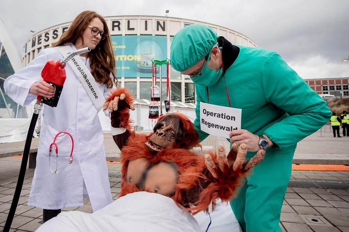 Aktivisten der Deutschen Umwelthilfe (DUH) demonstrieren vor der Messe Berlin gegen Palmöl im Biodiesel.