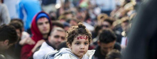 Die Zahl der in Luxemburg ankommenden Flüchtlinge ist im November gesunken.