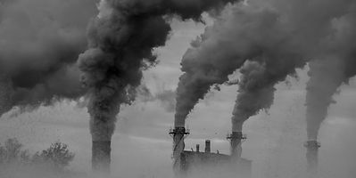 Firms that are keen to know their carbon footprint typically follow the Greenhouse Gas protocol