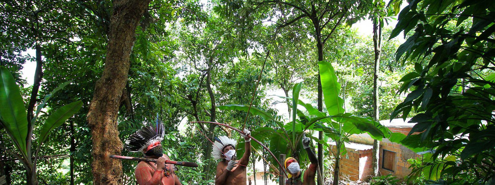 Männer einer indigenen Satere-Mawe-Familie in Brasilien tragen bei der Jagd Mundschutzmasken, um eine Ansteckung mit Coronavirus zu vermeiden.