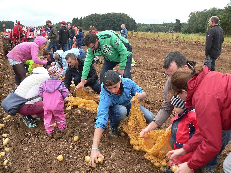 Das Kartoffelfest in Binsfeld ist und bleibt ein Pulikumsmagnet.