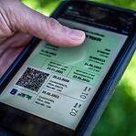 Portugal. Já é possível aceder aos certificados digitais no portal SNS24