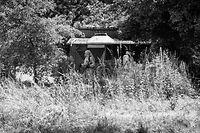 31.5. Merl / Leichenfund in ehemaligen Schrebergarten / rue de Merl.rue de la Barriere , rte de Longwy  Foto:Guy Jallay